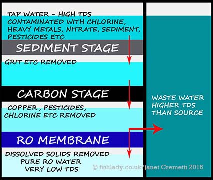 RO-filter-diagram-fish-keeping-aquariums